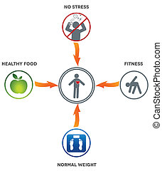 Healthy lifestyle Healthy food, fitness, normal weight and...