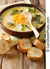 Healthy lunch broccoli cheese soup in a bowl with toast close-up. vertical