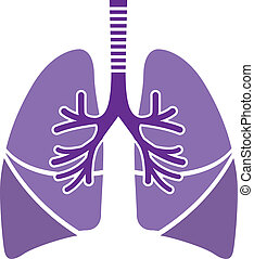 Healthy Lungs - healthy lungs vector illustration clip-art ...