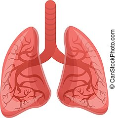 Healthy lungs icon, cartoon style