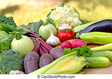 Healthy organic food - fresh vegetables