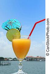 Healthy organic mango juice in summer time