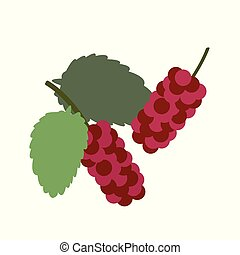 Healthy organic red mulberry, colorful tropical nature fresh...