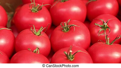 Healthy organic red vegetables arranged in even rows - Close...