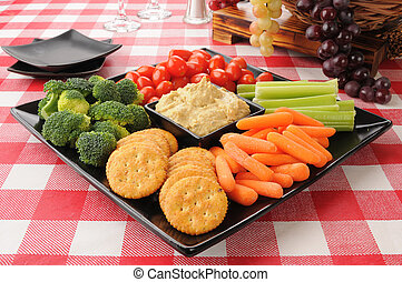 healthy snack tray with vegetables, crackers and greek style hummus