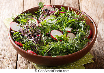Healthy spring meal of radish salad with micro greens and lemon dressing close-up in a bowl. horizontal