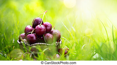 healthy summer food; fresh cherry fruit on a green background