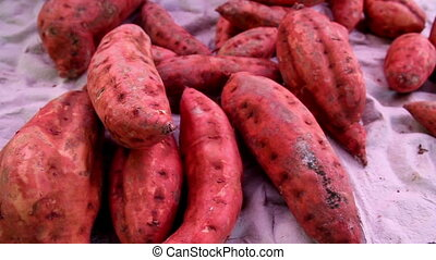 Healthy sweet potato root crop for your snack. Also great ...