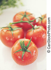 Healthy Tomato with water drop