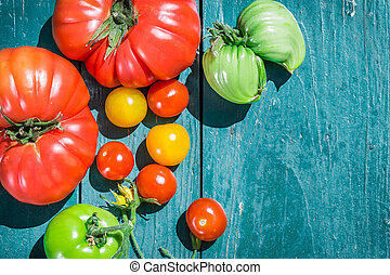 Healthy tomatoes in the countryside