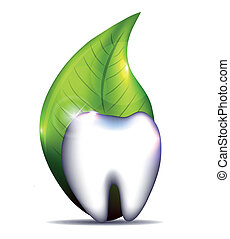 Healthy tooth with leaf