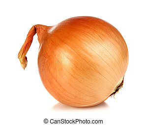 onion - healthy vegetable onion isolated on white background