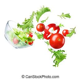 Healthy Vegetable Salad. Dieting Concept