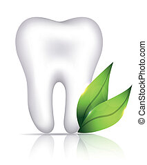 Healthy white tooth and green leafs