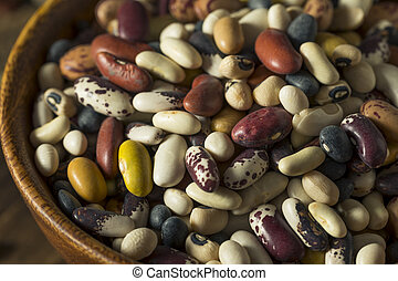 Heap of Assorted Mixed Organic Dry Beans