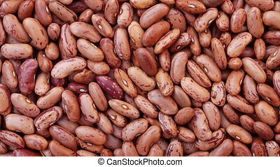 Heap of bean, panning video - Heap of brown bean, closeup...