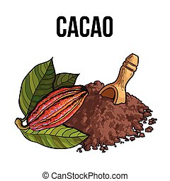 Heap of cocoa powder with wooden scoop and cacao fruit
