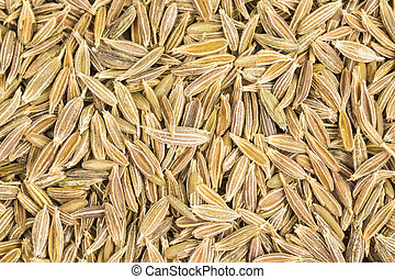 cumin seeds - heap of cumin seeds - cuminum cyminum