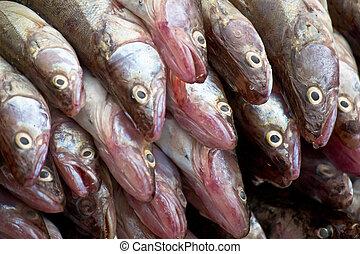 Heap of fish