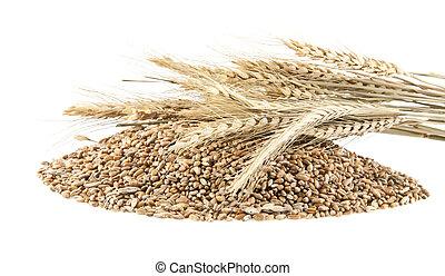 heap of grain