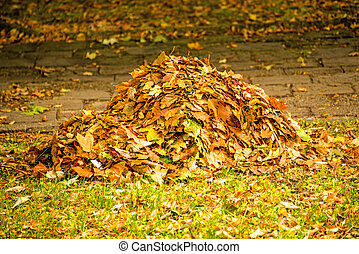 heap of leaves in autumn