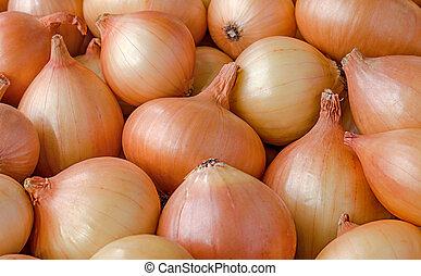 Heap of onions.