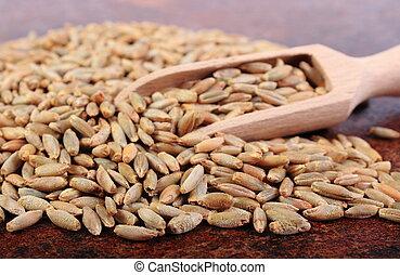 Heap of rye grain with wooden spoon