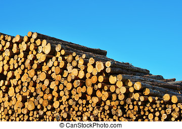 Heap of timber logs