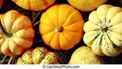 Heap of yellow pumpkins - From above view of orange pumpkins...