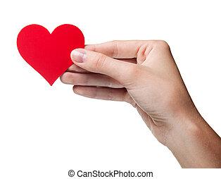 heart., シンボル, 女性, -, 隔離された, 手の 保有物, 赤