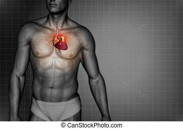 Heart attack concept