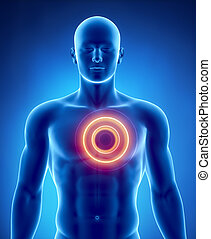 Heart attack concept with glowing circle - Male anatomy of...