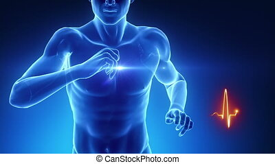 Heart beat concept in fitness - Heart beat concept in...