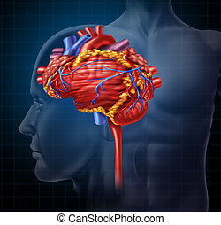 Heart Brain - Heart brain shaped human organ as intelligence...