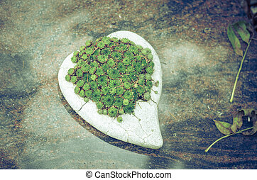 heart decoration in stone at grave