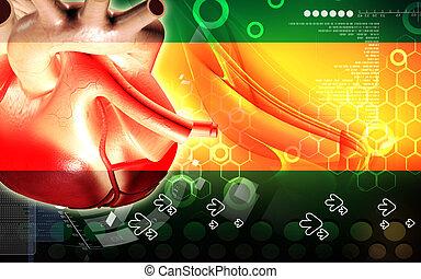 Heart - Digital illustration of heart in colour background