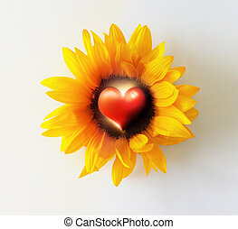 Heart Flower - Abstract photo concept of a bright yellow...