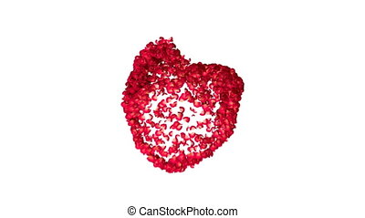 heart made with petals of red roses