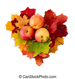 Heart from maple leaves and three apples isolated .