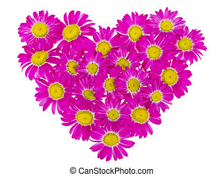 heart from pink daisies