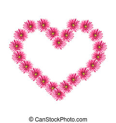 Heart from pink gerbera flowers isolated on white background. Valentine's Day
