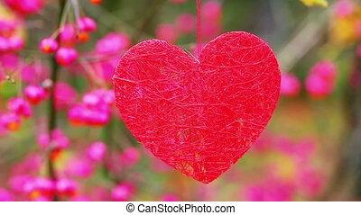 Heart hanging on the bush