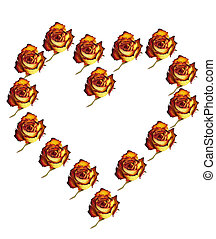 Heart - Herz - Heart shaped out of Roses on white Background...