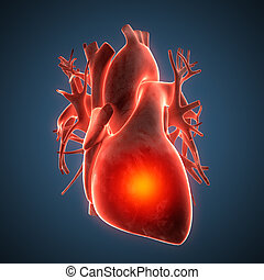 heart human disease illustration