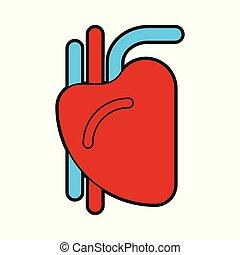 Heart human sign. Organ of man. Vector illustration