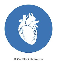 Heart icon in black style isolated on white background. Organs symbol stock vector illustration.