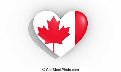 Heart in colors of flag of Canada pulses, loop