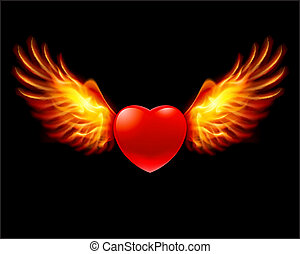 Heart in fiery wings, a color illustration on a black ...