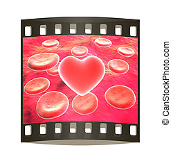 Heart in red blood cells. The film strip