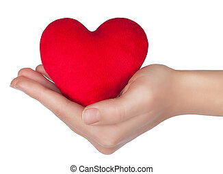 heart in woman hand isolated on white